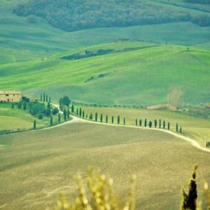De carro pela Toscana: a belíssima paisagem do Val d'Orcia