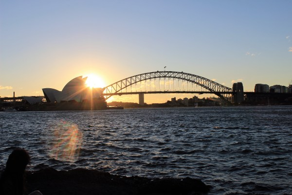 sunset in Royal Botanic Garden, Sydney