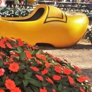 Conheça a Expoflora, a famosa exposição de flores que traz um pouco da Holanda para o Brasil