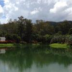 Inhotim: arte, arquitetura e natureza num só lugar!