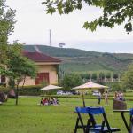 Dica de passeios no Vale dos Vinhedos: Wine Garden Miolo e Vinhos Don Laurindo