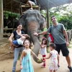 Phuket com crianças: trekking de elefantes no Kok Chang Safari