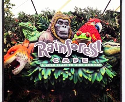 """Rainforest Café: um """"restaurante-floresta tropical"""" que as crianças vão adorar!"""
