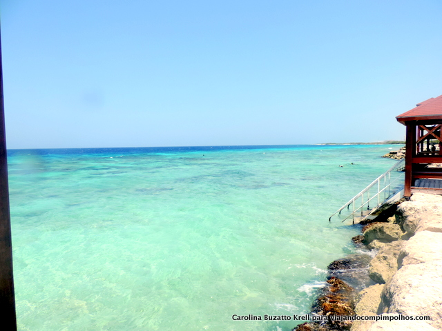 snorkel-The-Palm-Island-Aruba