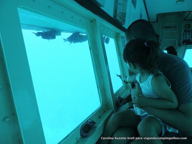 SeaWorld-Explorer-Aruba