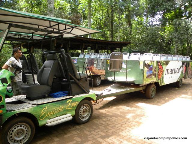 macuco-safari