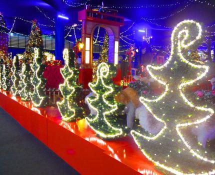 Noeland no Parque Expoflora de Holambra: o reino mágico do Natal até final de dezembro.