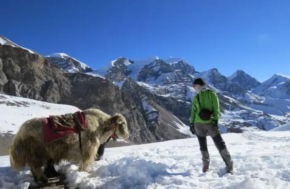 viaje-sola-colombiajeros6-Annapurnas