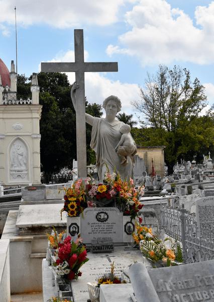 tumba amelia