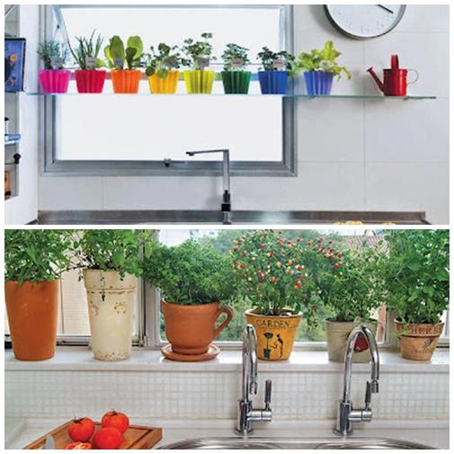 hortas em casa cozinha