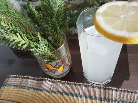 soda caseira (2)