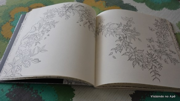 Jardim Secreto Livro de Colorir Johanna Basford 2