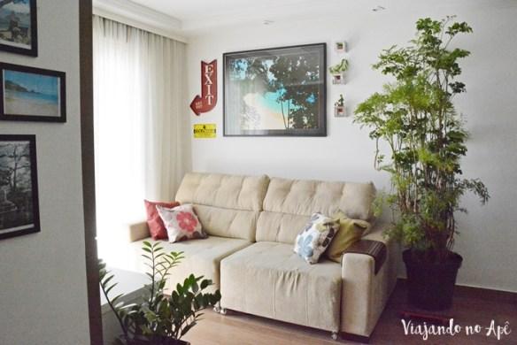 arvore-da-felicidade-polyscias-plantas-dentro-de-casa-ambiente-interno-plantas-na-decoracao