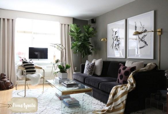 ficus-lyrata-figueira-lira-plantas-dentro-de-casa-ambientes-fechados-internos-decoracao-sala
