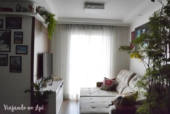 plantas-dentro-de-casa-apartamento-arvore-da-felicidade-zamioculca-samambaia