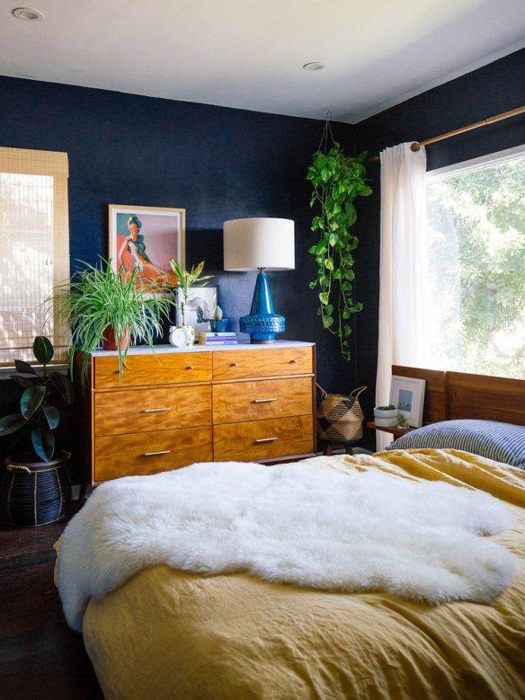 plantas na decoracao plantas para ambientes internos jiboia plantas suspensas teto pendentes quarto