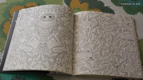 Jardim Secreto Livro de Colorir Johanna Basford 3
