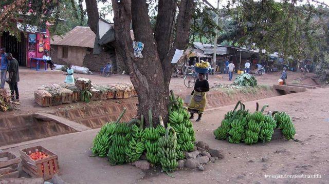 viajar a tanzania 43