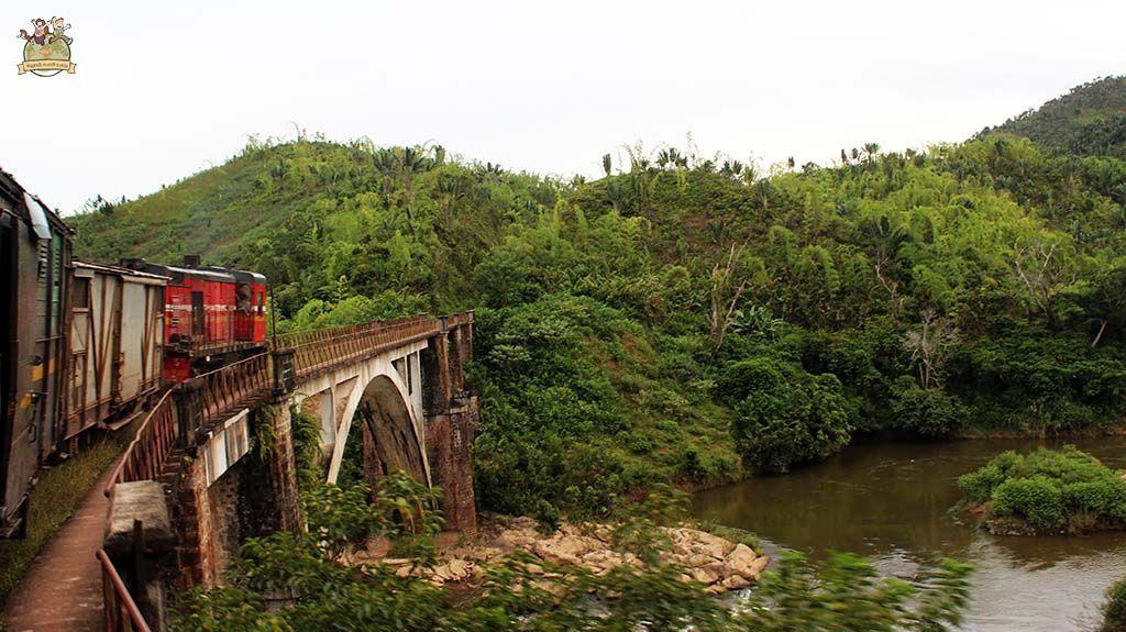 Tren de la selva madagascar