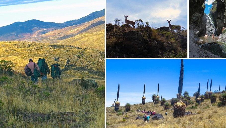 La Libertad: Cuatro circuitos turísticos ofrece el santuario de Calipuy - Viajando por Perú