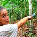 Carol de viajando por un sueño en la Selva Amazónica: El lado salvaje de la naturaleza.