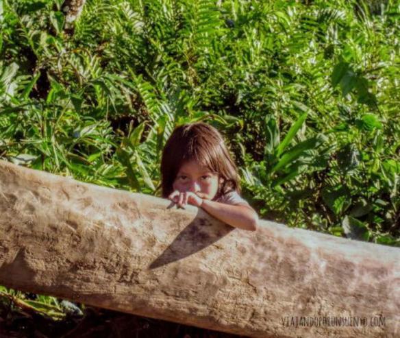 Viajando por un sueño amazonas ecuatoriana, Vx1S