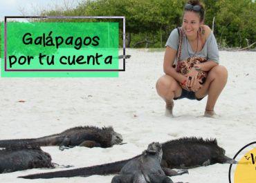 portadaGalapagosportucuenta