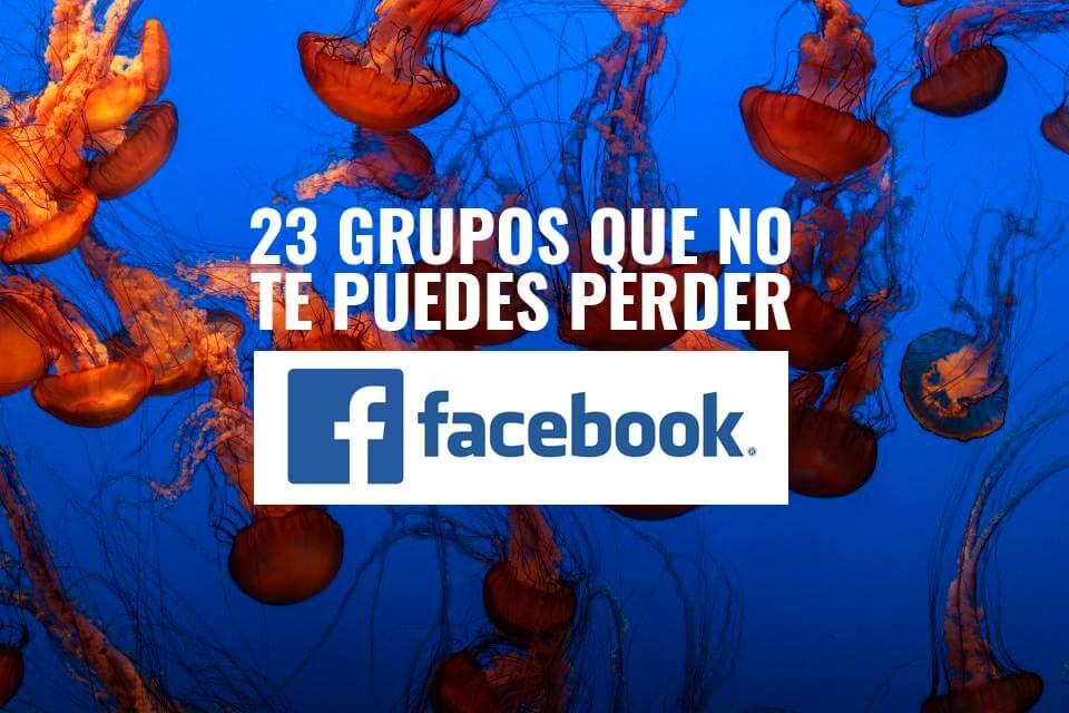 23 Grupos de facebook de buceo y foto submarina