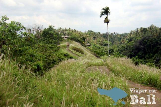 Bukit Campuhan - Ubud