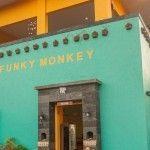 funkey-monkey-kuta-bali