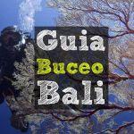 Guía de Buceo en Bali