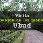 Visita: El Bosque de los Monos – Ubud