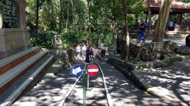 visita-bosque-monos-ubud-6