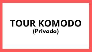 Tour Komodo Privado