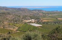 El Delta del Ebro desde el poblado