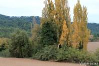 Bellprat está rodeado de campos de cultivo y bosque