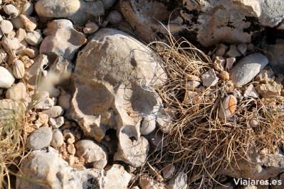 Piedras de forma caprichosa que divierten a los críos