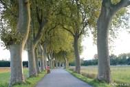 Paseo en bicicleta por Villenouvelle
