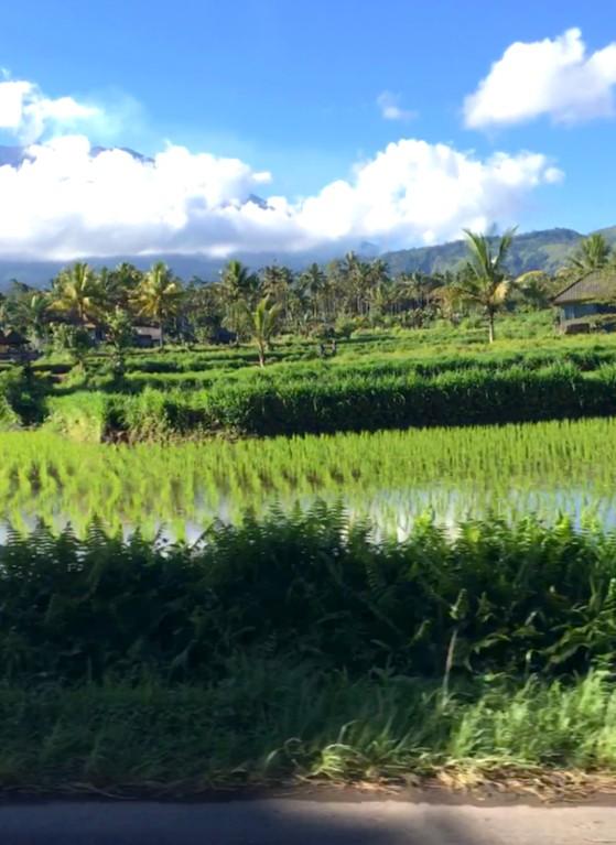 Paisajes espectaculares recorriendo el este de Bali en moto