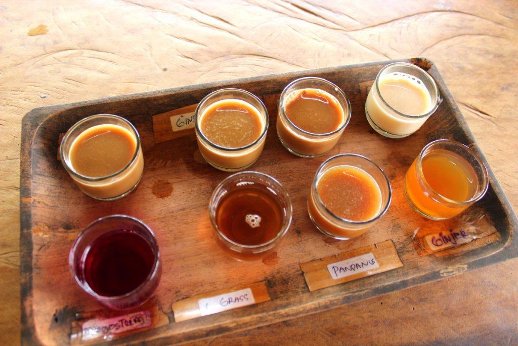 Degustación de cafés en Tegallaland