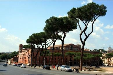 Roma 34