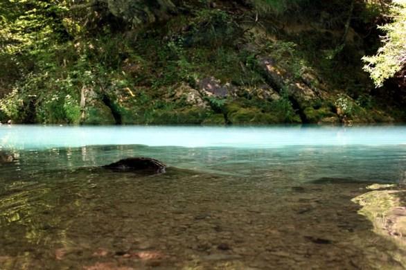 Nacimiento Río Urederra