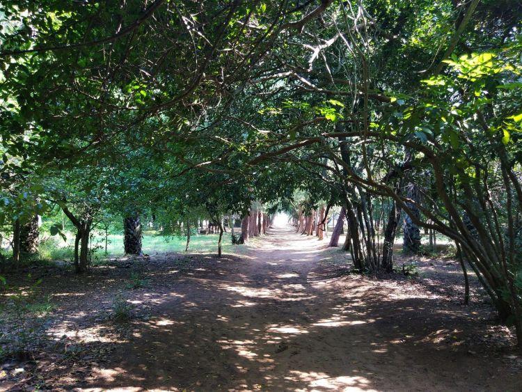 Paseo Cueva Phraya Nakhon