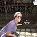 Mi historia con los roedores y como sobreviví al Karni Mata o Templo de las Ratas en la India