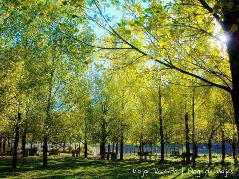 ... descansar o leer bajo los árboles, son algunas de las actividades que nos esperan