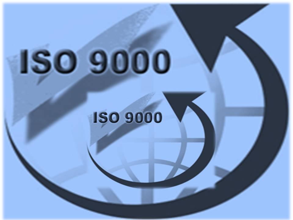 Muerte al iso 9000