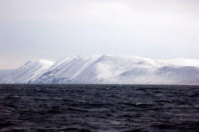 Vista de la isla de Wrangel desde el Ártico