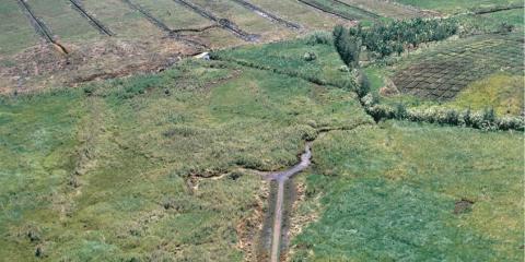 Antiguo sitio agrícola de Kuk