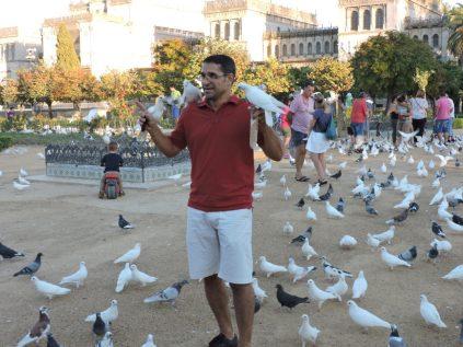 Padre dandole de comer a las palomas, para que sus niños jueguen con ellas.