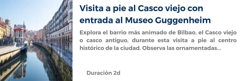 Entrada al Museo Guggenheim